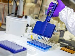 Lab research with arm in white lab coat and purple glove holding blue lab equipment
