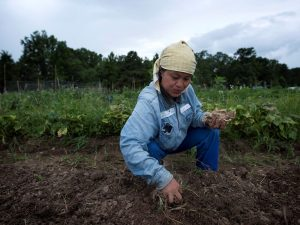 Woman in agricultural field